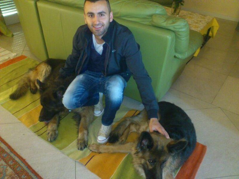 Am mit Hunden