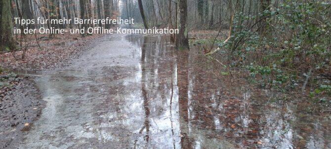 Nicht barrierefrei: überschwemmter Wanderweg im Wald